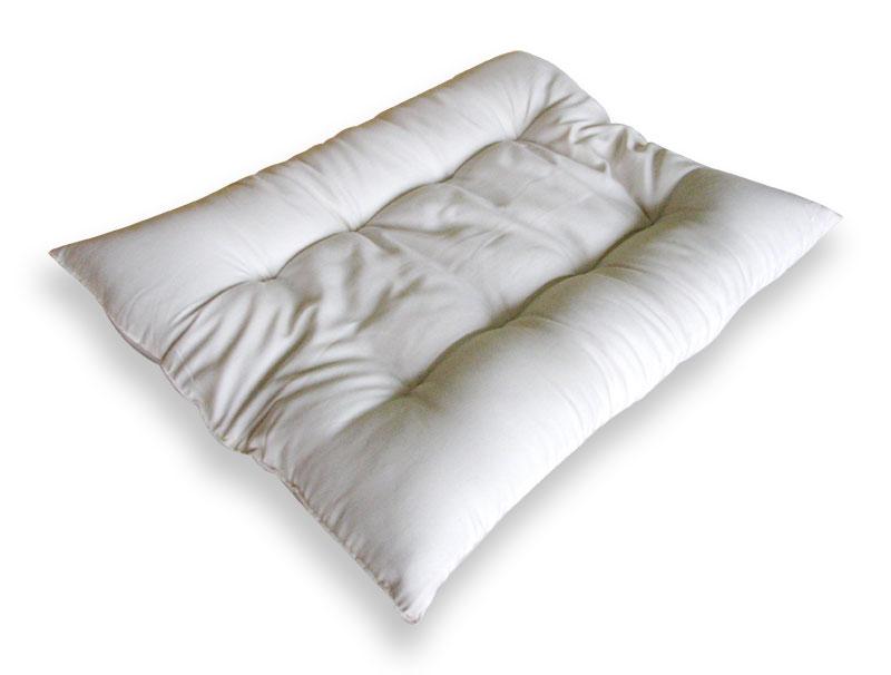 Pregnancy Pillow Chiropractic