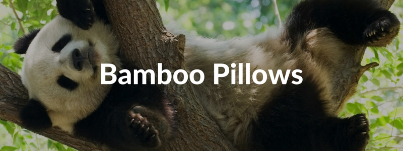 What are Bamboo Pillows Really Made of? - Sleeping Organic